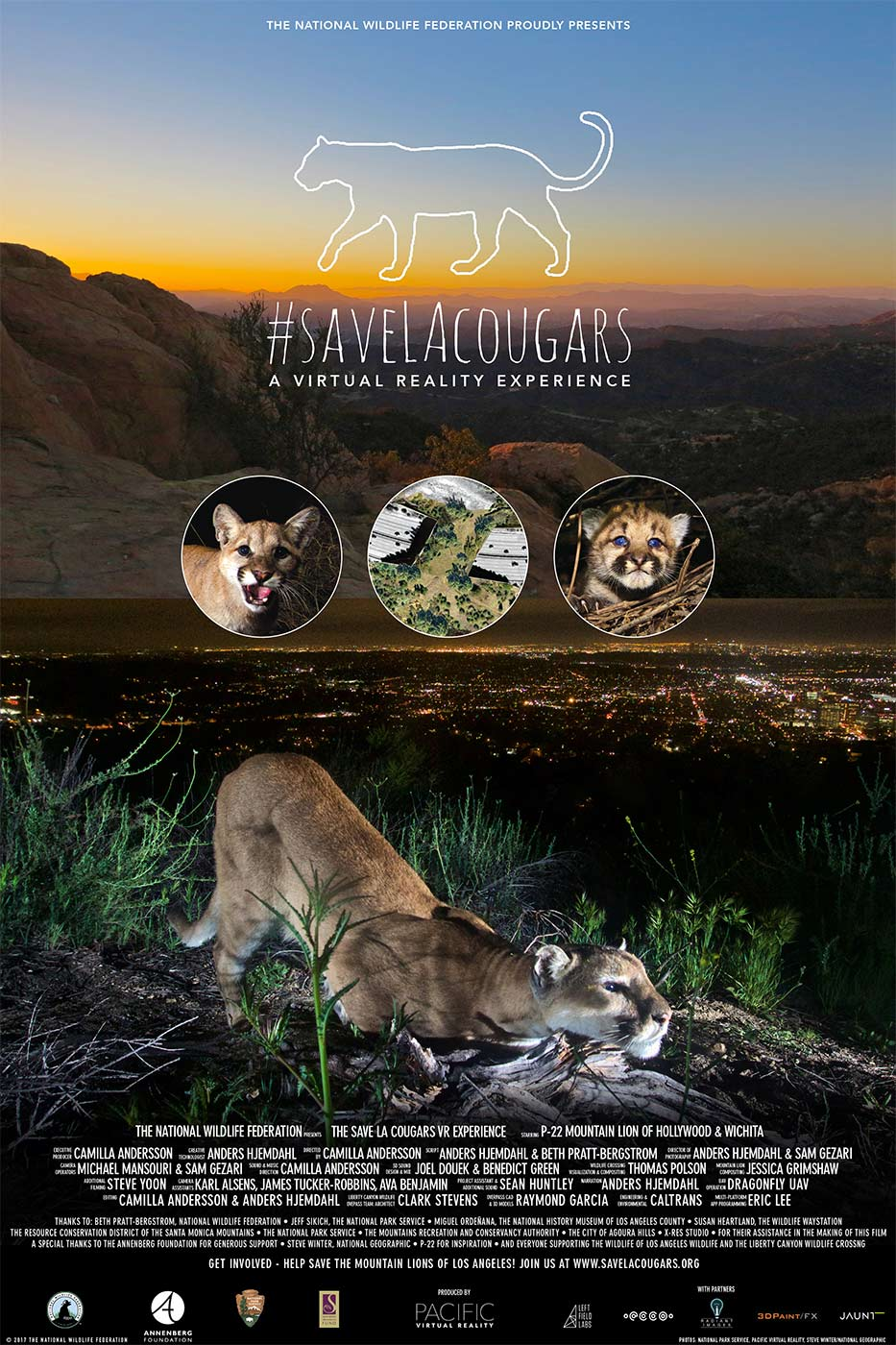 Saving the mountain lions of Los Angeles | Pacific Virtual Reality